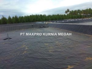 distributor geomembrane bagus 2020